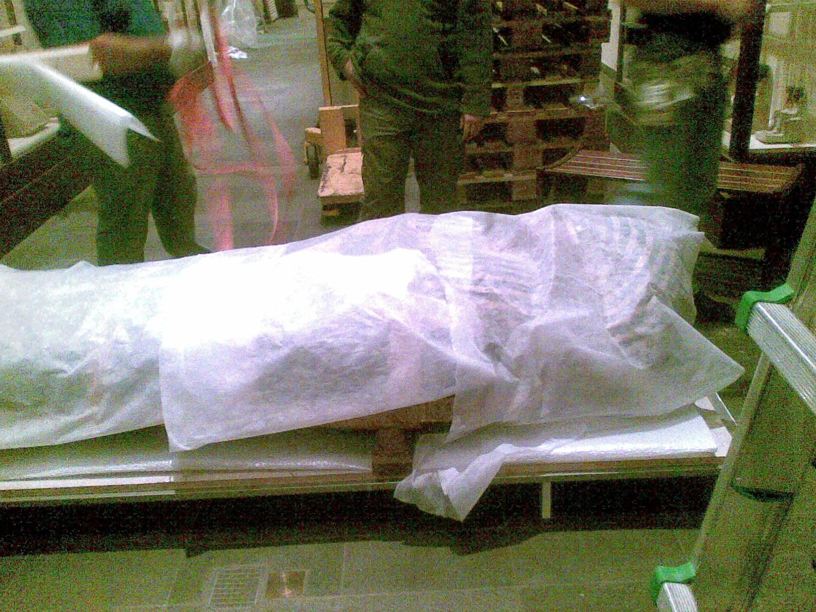 Egizio 2010 marzo Tomba di Kha coperchio piccolo